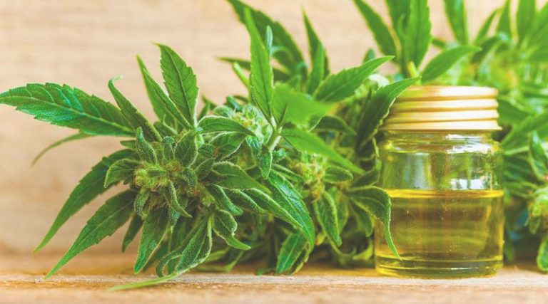 How To Use Legal Hemp Oil?